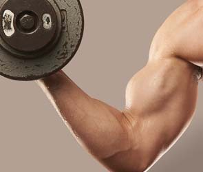Bigger Guns: Biceps Building Basics