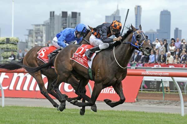 (Horse) Race Fit