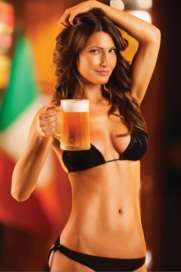THE BLOKES' GUIDE TO BEER