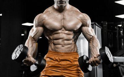 Arm Workouts For Big Guns