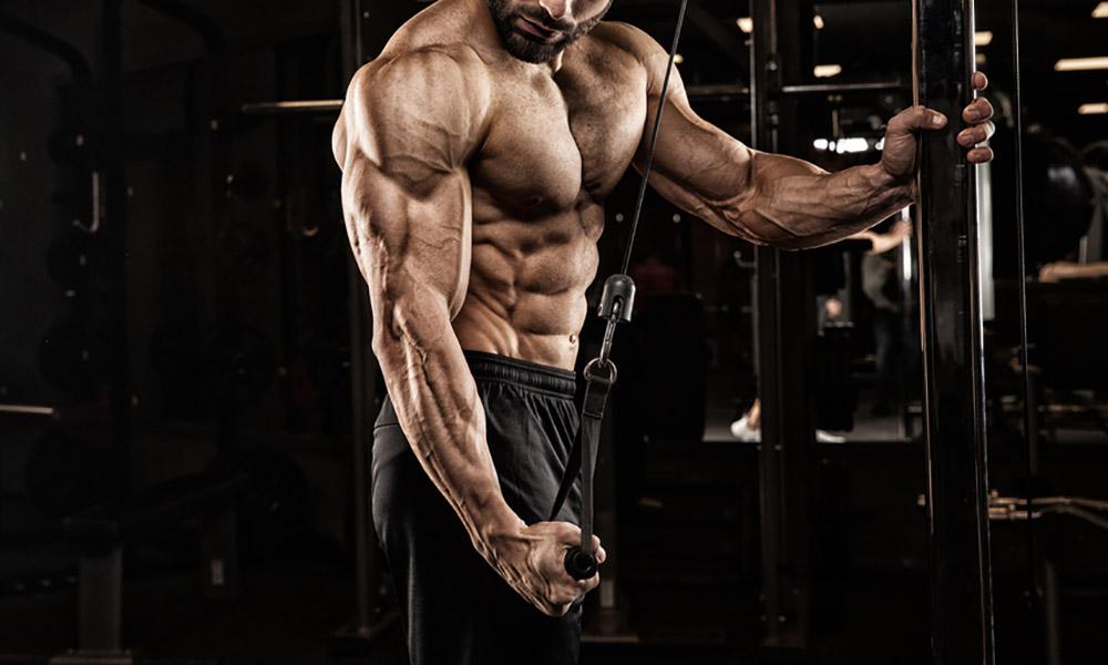 Bigger Guns: Biceps Building Basics